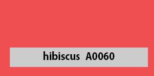 A0060_hibiscus_varvikaart_kuumpress_kangur.ee6